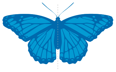 Симметрия - symmetry
