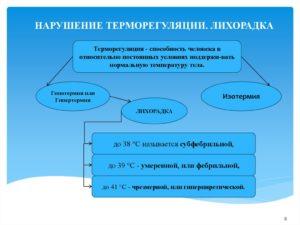 Терморегуляция - thermoregulation