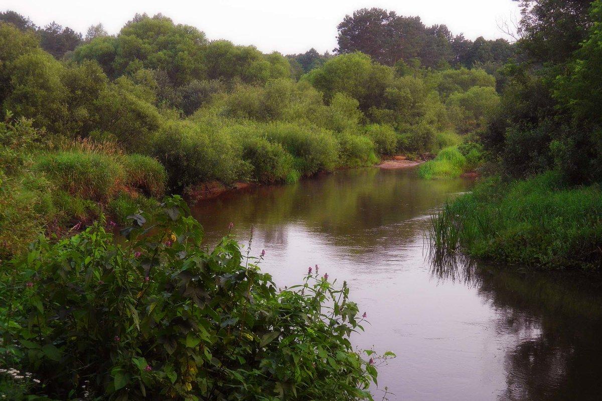 Излучина реки – образ, говорящий о многом