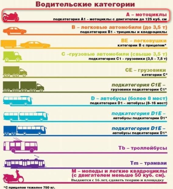Категория а водительских прав: что это значит, как открыть