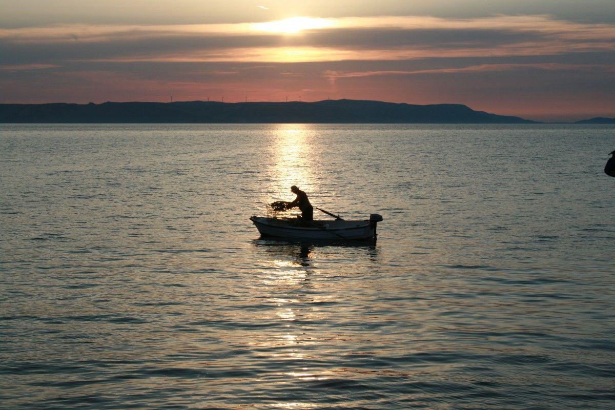 Видео рыбалка: смотреть онлайн ролики о ловле рыбы зимой и летом