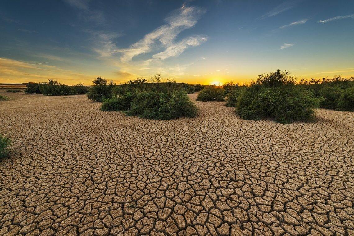 Опустынивание земель: основные причины и последствия. как можно решить проблему деградации почв?