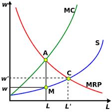 Монопсония на рынке труда