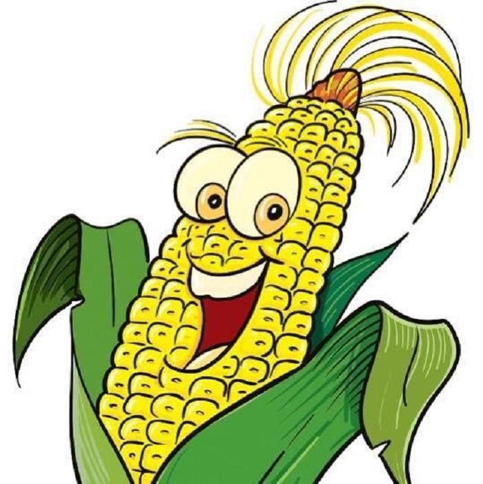 Кукуруза (род)