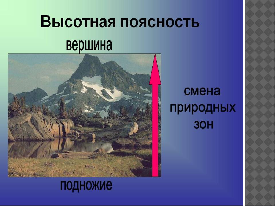 Широтная зональность проявляется. что такое широтная зональность и высотная поясность, в чем они выражаются, примеры. закон географической зональности