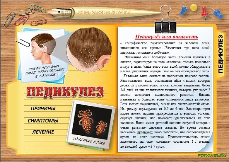 Педикулез                (вшивость)