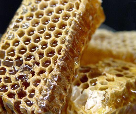 Падевый мед – польза и вред особого продукта, особенности хранения