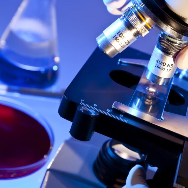 Иммуногистохимическое исследование при раке молочной железы: расшифровка