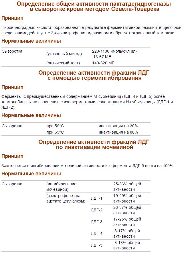 Лактатдегидрогенеза в крови: норма и причины повышения