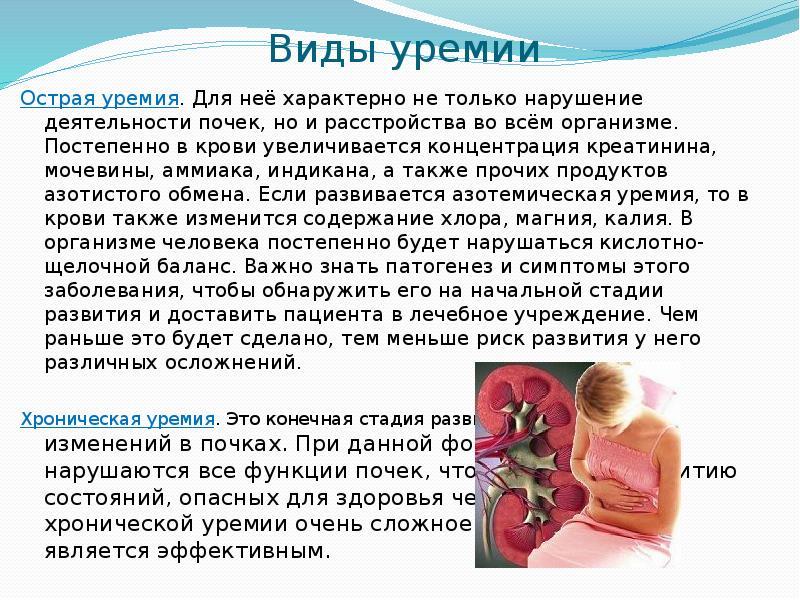 Уремия, описание заболевания на портале medihost.ru