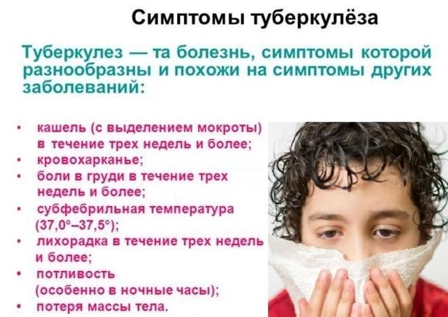 Туберкулез: как развивается, проявления, диагностика, как лечить и  предотвратить