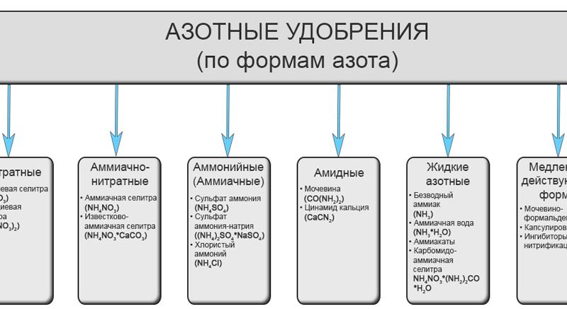 Nрk – что это такое, как определить состав и количество удобрения | дела огородные (огород.ru)