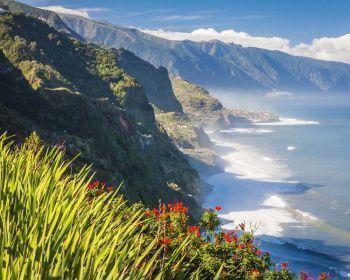 Мадейра — википедия