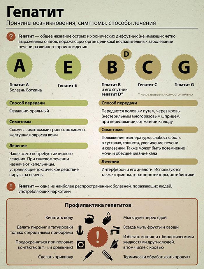 Как передается гепатит б, симптомы, лечение, диагностика и профилактика