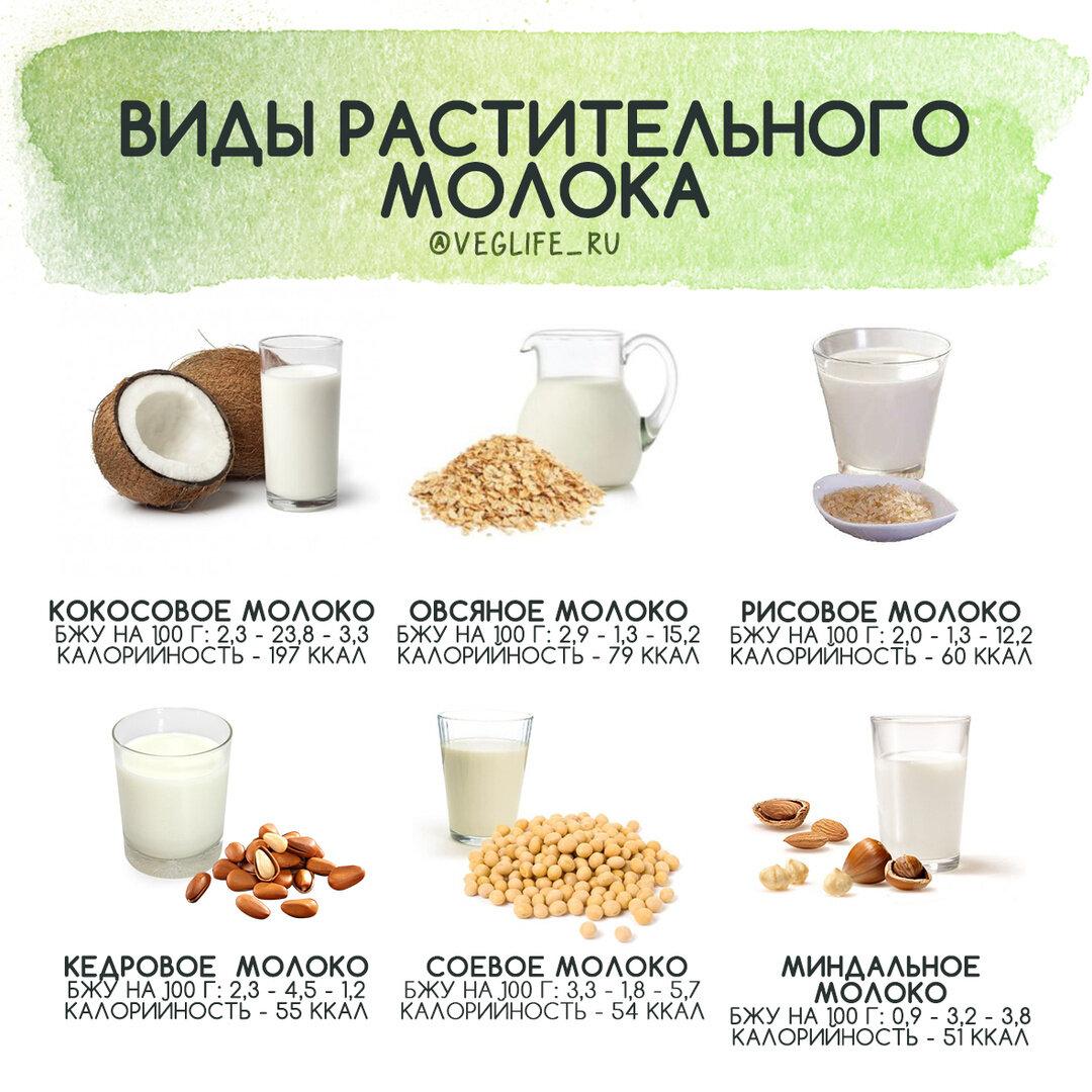 Как я училась делать растительное молоко в домашних условиях
