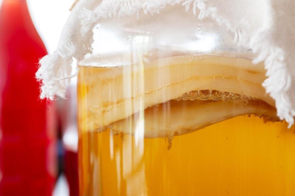 8 полезных свойств чайного гриба (комбучи) и противопоказания