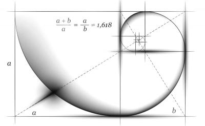 Что такое прямая пропорциональность?