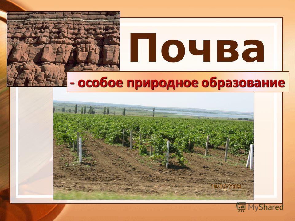 § 50. почва