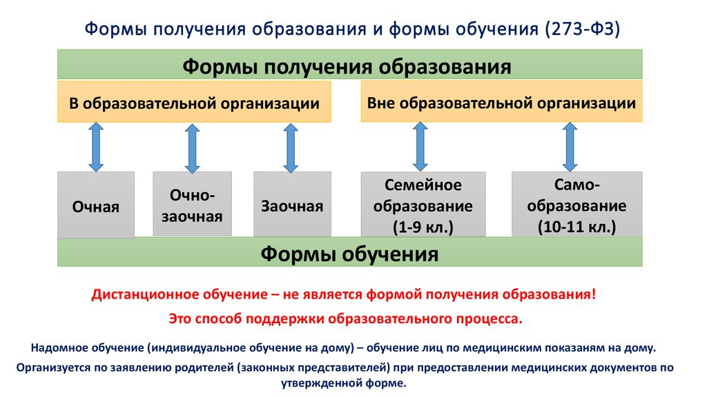 Очное и заочное обучение: что это, чем отличается, разница форм