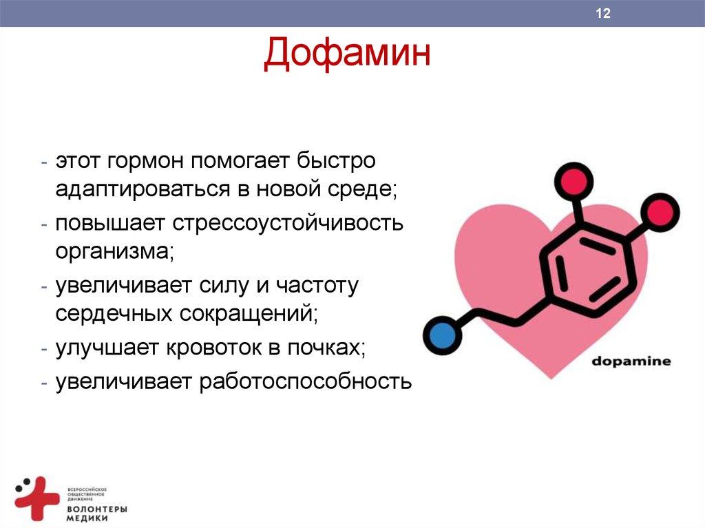 Функции и влияние дофамина на организм, что такое «гормон счастья» и как повысить его уровень