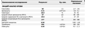 Мснс в анализе крови повышен: причины, средняя концентрация гемоглобина