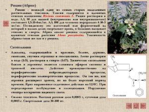Рицин - химия