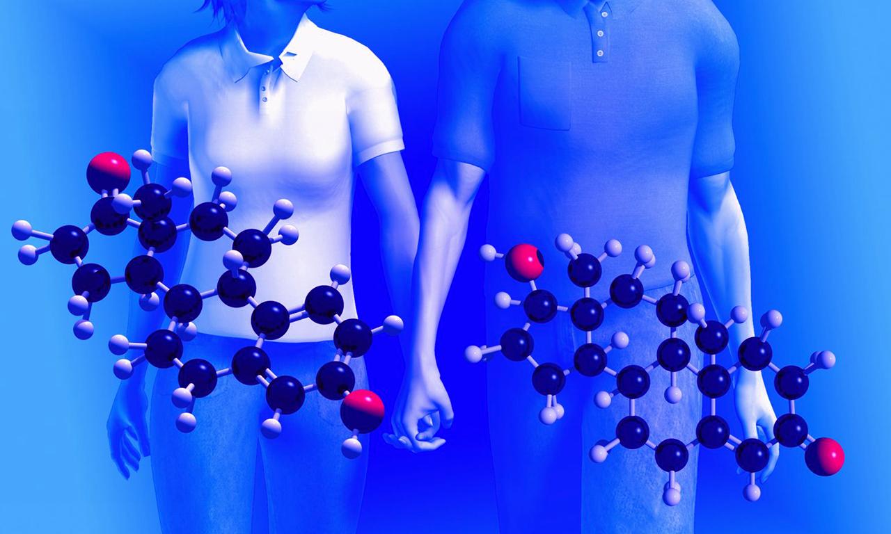 Гормоны — википедия. что такое гормоны