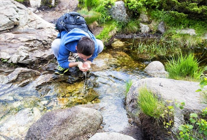 Родники. что такое родник? полезные свойства родниковой воды