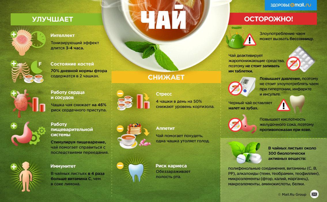 Чай матча: польза, вред, состав, калорийность и домашние рецепты