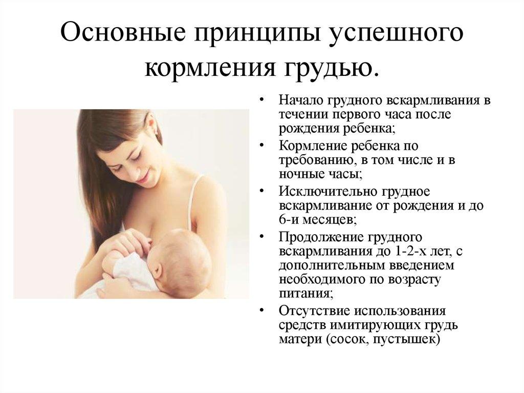 Что такое лактация и состав материнского молока. состав грудного молока и польза лактации