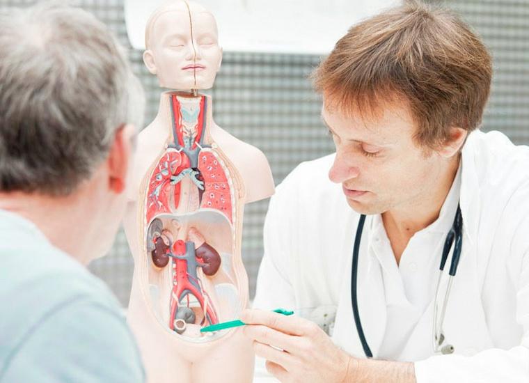 Нефролог   компетентно о здоровье на ilive