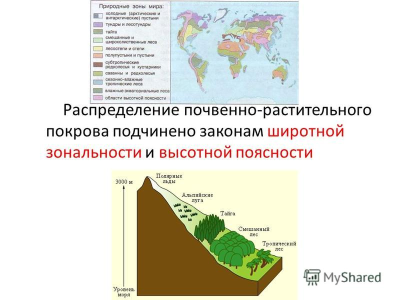 Что такое широтная зональность, и как она влияет на природу земли |