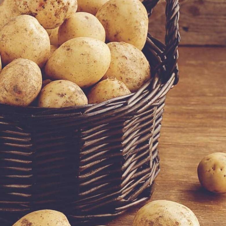 Картофель: полезные свойства и вред | food and health