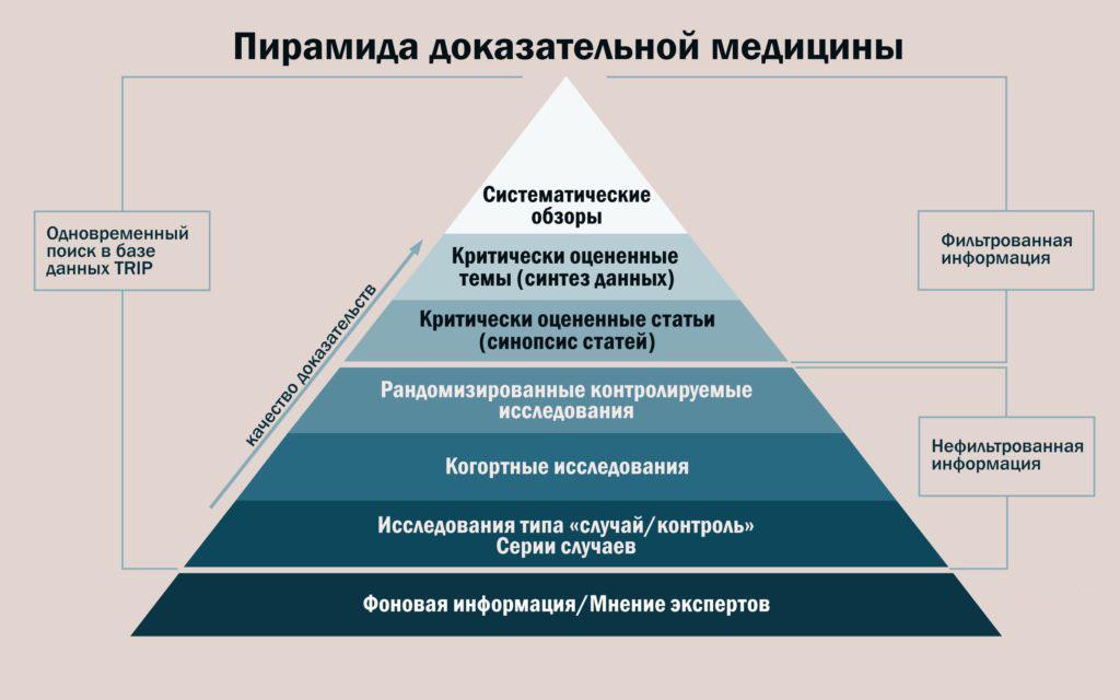 Обзор - это... виды обзоров и их значение