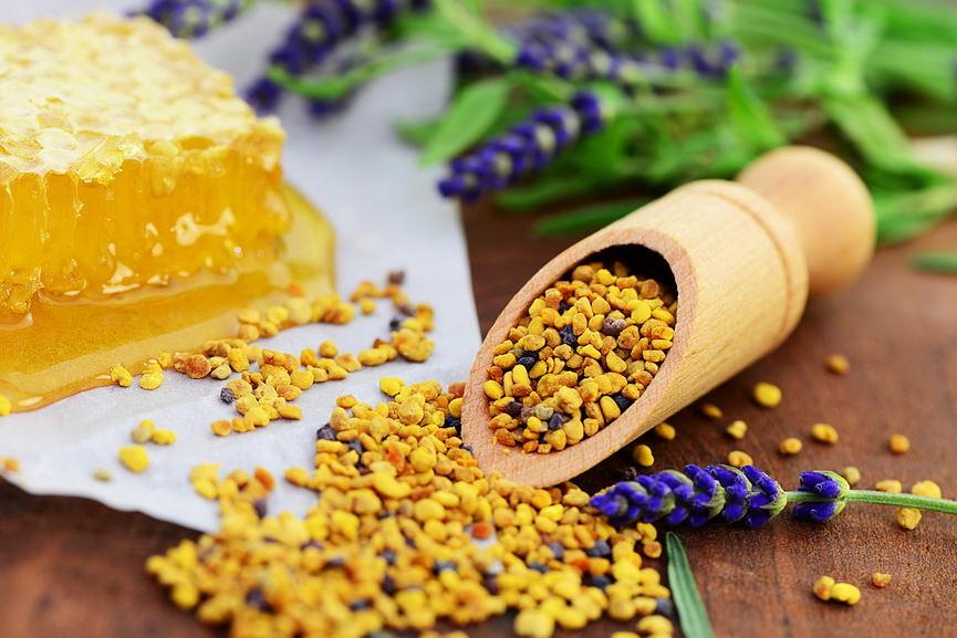 Перга пчелиная: полезные свойства, как принимать