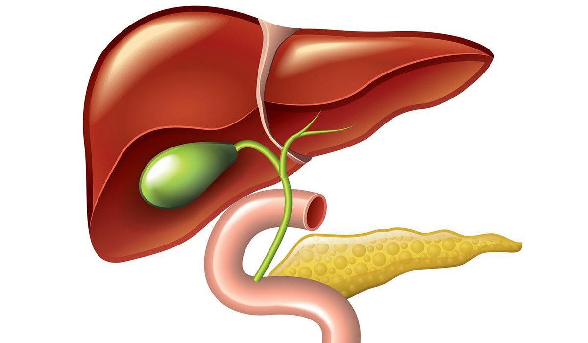 Дуоденальное зондирование на паразитов. как подготовиться и диета перед дуоденальным зондированием