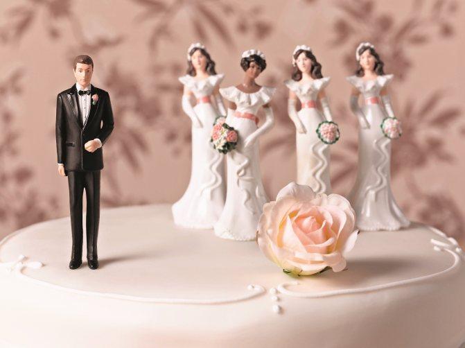 Моногамия — википедия