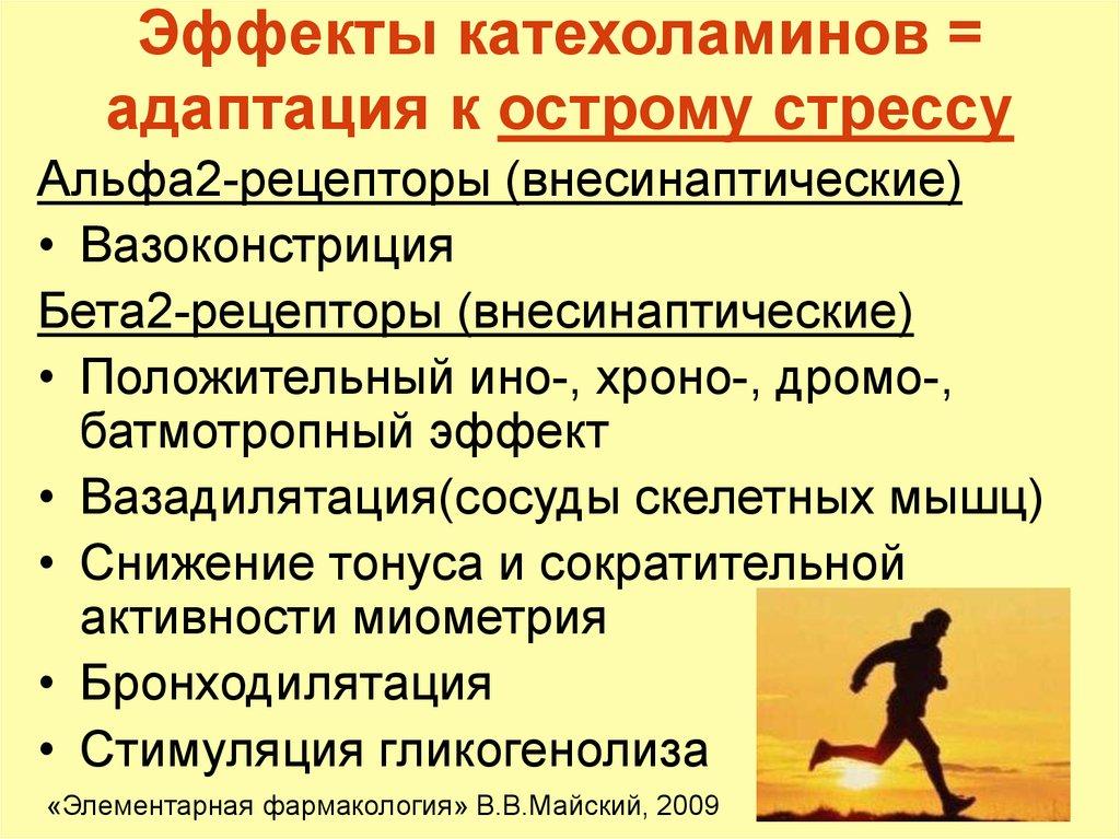 Катехоламины: свойства представителей группы, значение определения катехоламинов в моче и крови, использование в медицине | pro-md.ru