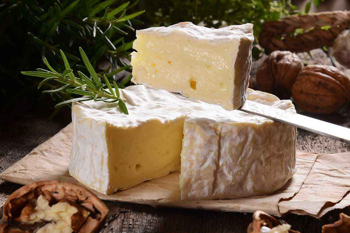 Сыр камамбер – что это такое, как его есть, рецепты приготовления, блюда с камамбером, чем заменить сыр?