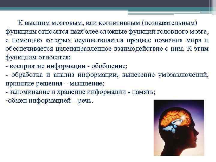 Что относится к когнитивным функциям человека: проблемы функционирования