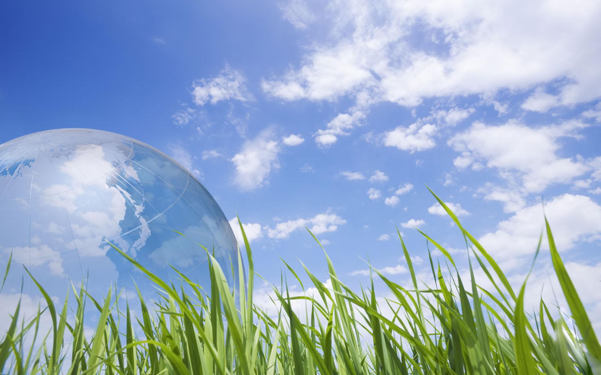 Экология - виды и основные понятия, определение экологии   природная экология