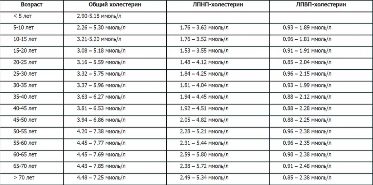 Что делать при повышенном или пониженном холестерине лпнп?