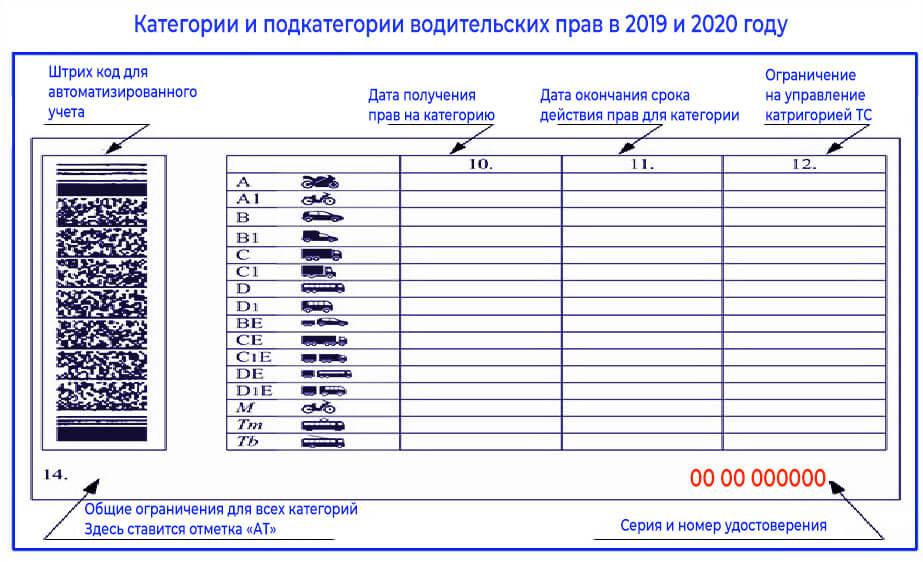 Все категории водительских прав 2020 года с расшифровкой: а, в, с, d, м, ве, се, de