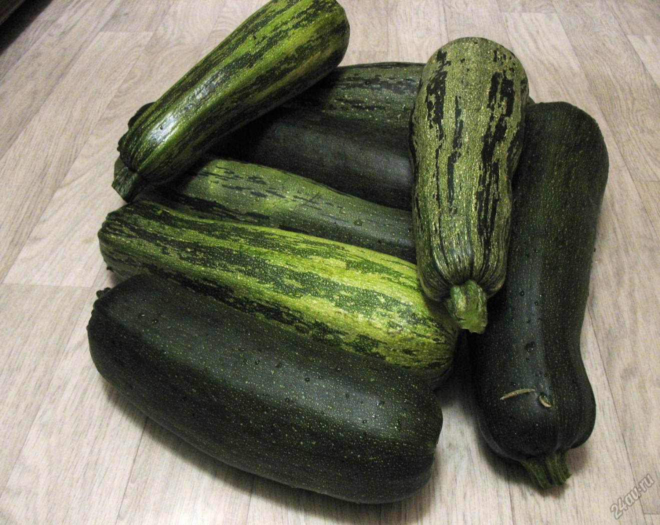 Цукини: польза, вред и калорийность   food and health