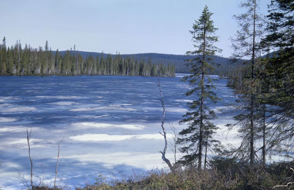 Заповедник – это территория исключительной природы :: businessman.ru