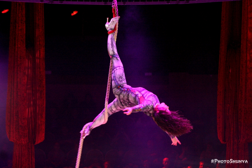 Что такое цирк