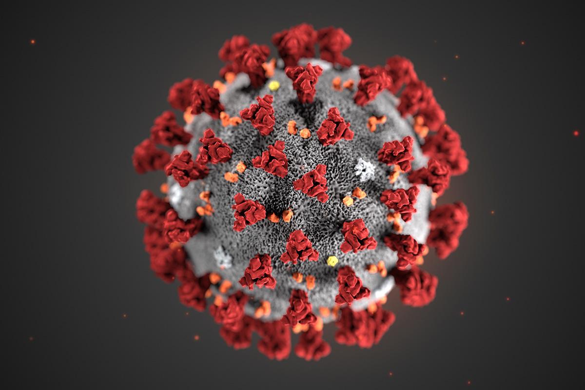 Что такое самоизоляция от коронавируса? ?