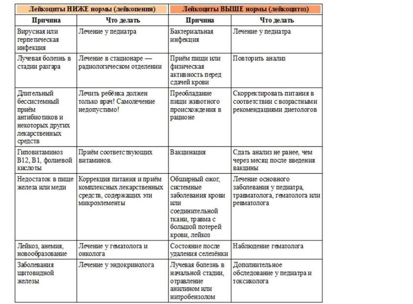 Общий анализа крови на эозинофилы: расшифровка