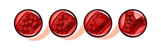 Что такое тромбокрит и какая его норма в крови