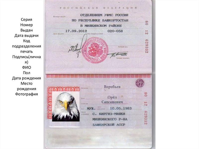 Как узнать серию и номер своего паспорта онлайн в 2018 году?